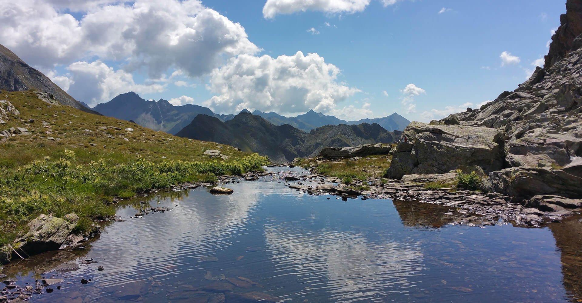 In unserer Almenregion Gitschberg-Jochtal ist der Sommer zu Hause