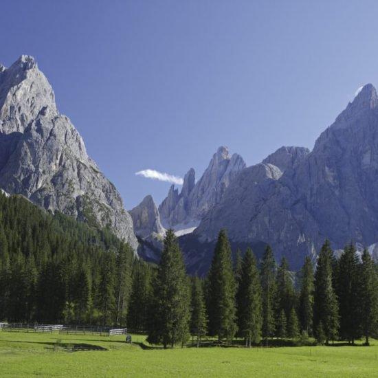 sommerferien-urlaub-almenregion-gitschberg-jochtal -03
